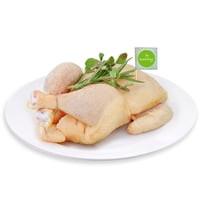 Friss csirke egészben, bio (AT)