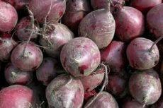 Cékla, új termés, bio (HU)