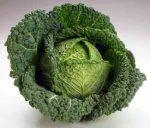 Kelkáposzta, új termés, bio (HU)