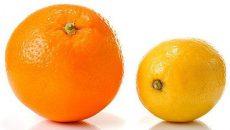 Narancs, nagy méretű, Navelina, bio (GR) - CH - 0384505