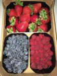 Friss gyümölcskeverék dobozban (málna, eper, áfonya), bio, Spanyolország (750g/dob)