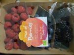 Friss gyümölcskeverék dobozban (feketeszeder, málna, áfonya), bio (ES) (150 g/dob) - Lot: 069757