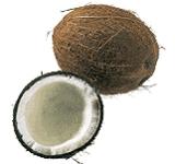 Kókuszdió, bio (ES)