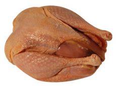 Fácán egészben, konyhakészen, fagyasztott, natúr (HU) (0,7 - 0,8 kg / db)